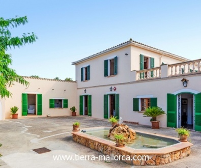 All necessary supply facilities for the operation of a Agrofinca hotel are available.