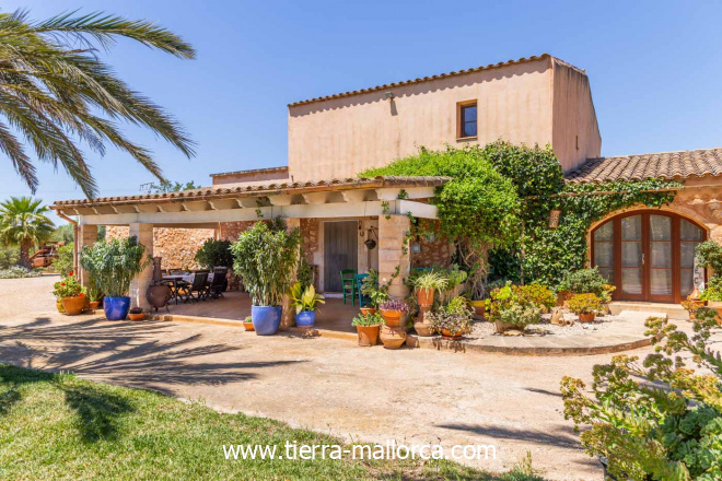Wooden beams, high ceiling, floor heating and an open fireplace give this beautiful house a special and cozy atmosphere. The exterior offers open and covered terraces, Mediterranean-style garden with automatic irrigation and a wide range of fruit trees, a